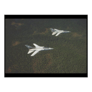 Panavia Tornado F. Mk 3_Aviation Photograp II Poster