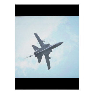 Panavia Tornado F. Mk 3_Aviation Photography II Poster