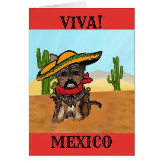 Pancho Yorkie Poo Card