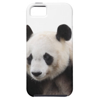 """Panda"" 優良製品 iPhone 5 ケース"