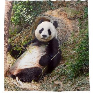 Panda 0315P