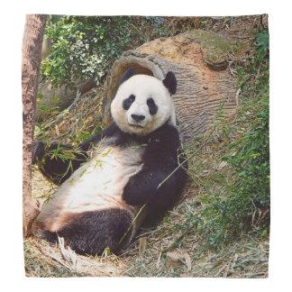 Panda 0315P Bandana