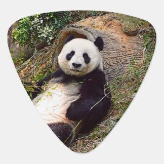 Panda 0315P Guitar Pick