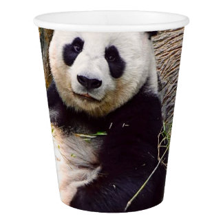 Panda 0315P Paper Cup