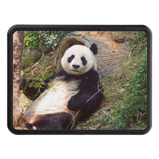 Panda 0315P Trailer Hitch Cover
