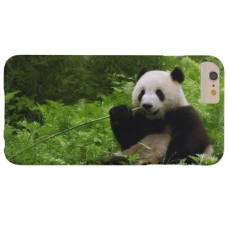 Panda Barely There iPhone 6 Plus Case