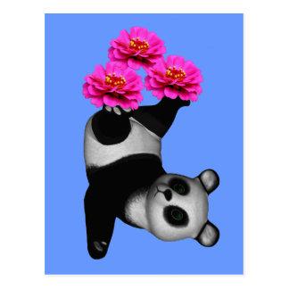 Panda Bear And Pink Zinnia Flower Postcard