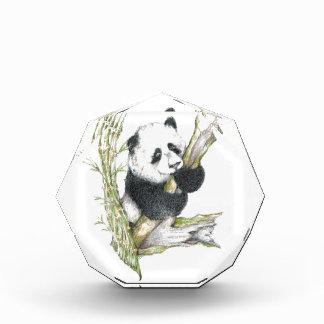 Panda Bear cute pencil drawing bamboo