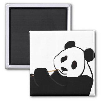Panda bear eating magnet