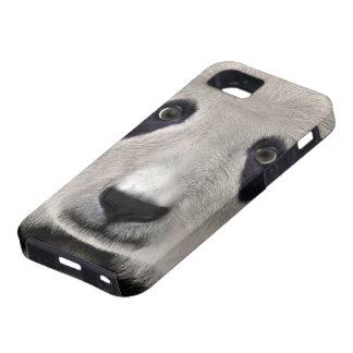 Panda Bear iPhone 5 Covers