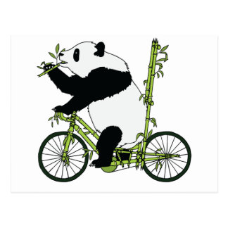 Panda Bear Riding Bamboo Bike Postcard
