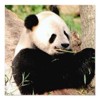 Panda chinois faire-parts