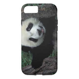 Panda cub with tree, Wolong, Sichuan Province, iPhone 7 Case