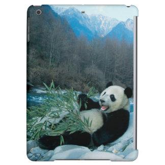 Panda eating bamboo by river bank, Wolong, 2 iPad Air Cover