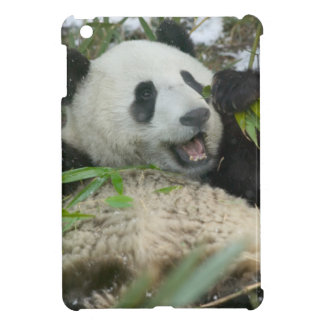 Panda eating bamboo on snow, Wolong, Sichuan, Cover For The iPad Mini