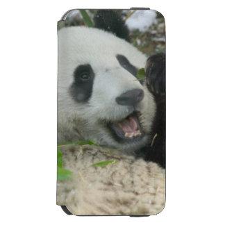 Panda eating bamboo on snow, Wolong, Sichuan, Incipio Watson™ iPhone 6 Wallet Case