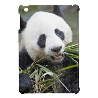 Panda eating bamboo shoots Alluropoda 2 iPad Mini Cover
