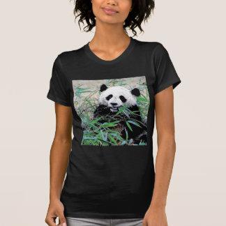Panda Eating Leaves Shirts