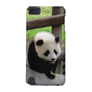 panda iPod touch (5th generation) cover