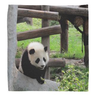 Panda Photograph Bandana