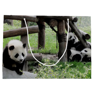 Panda Photograph Large Gift Bag