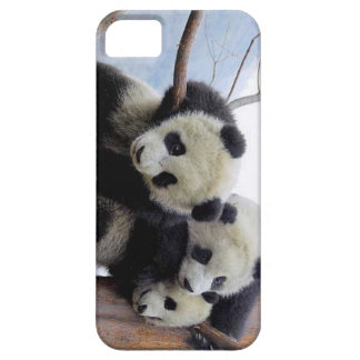 Panda Pod iPhone 5 Case