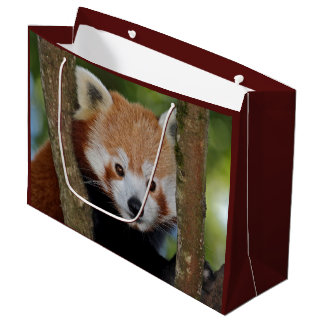 Panda Portrait Gift Bag
