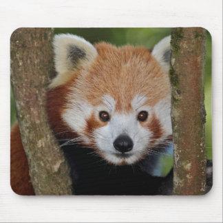 Panda Portrait Mousemat Mouse Pad