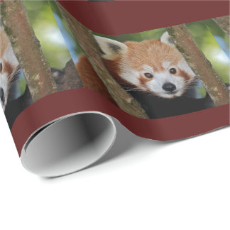 Panda Portrait Wrapping Paper