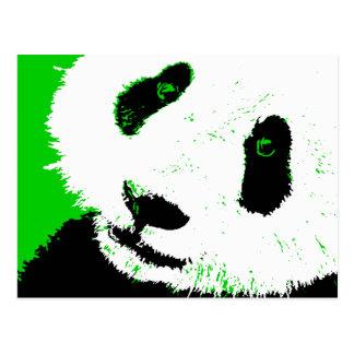 panda. postcard