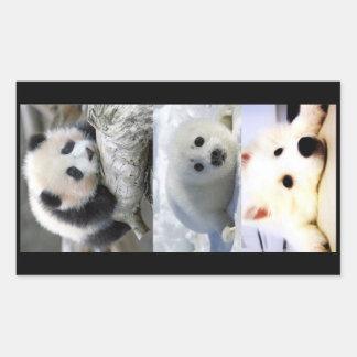 Panda-Seal-Mini American Eskimo Sticker