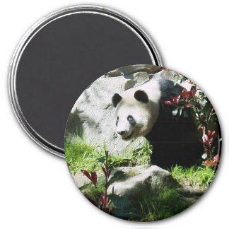 Panda Smile Magnet
