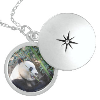 Panda Sterling Silver Locket Necklace