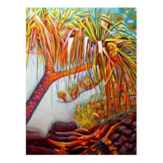 Pandanus Parasol Postcard