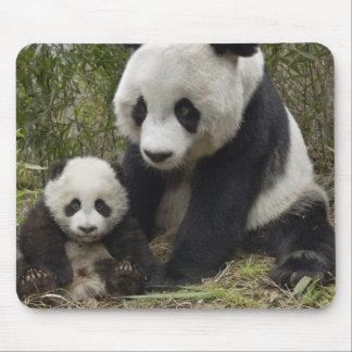 pandas mouse pad