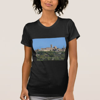 Panorama of Volterra village . Tuscany, Italy T-Shirt