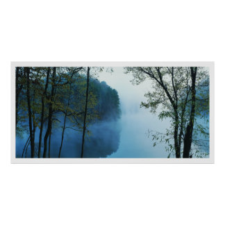 Panoramic Forest & River Landscape Poster