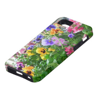 Panoramic Pansies iPhone 5 case