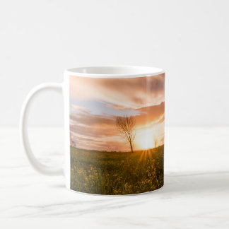 Panoramic view of a flowering  yellow daisy flower coffee mug