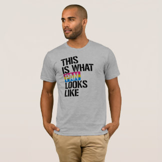 Pansexuality - This is what Pan Looks Like - - LGB T-Shirt