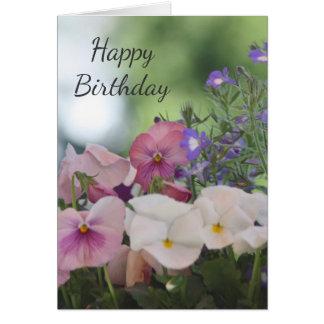 Pansies and lobelia card