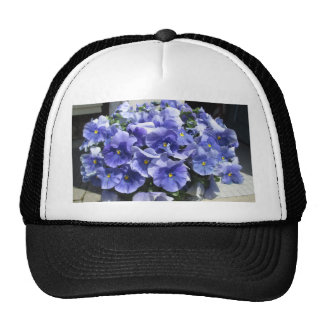 Pansies Sky Blue Trucker Hat