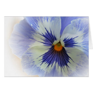 Pansy Blues Card