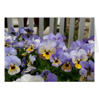 Pansy Blues Fence Card