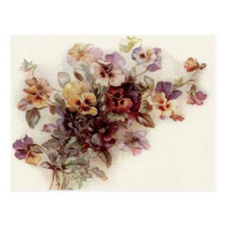 Pansy Bouquet Postcard
