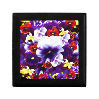 Pansy Celebration, Gift Box