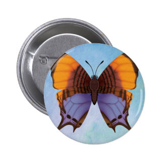 Pansy Daggerwing Butterfly 2 Inch Round Button