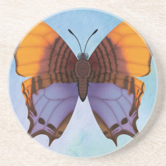 Pansy Daggerwing Butterfly Beverage Coasters
