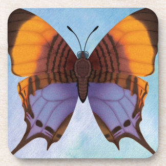 Pansy Daggerwing Butterfly Drink Coaster