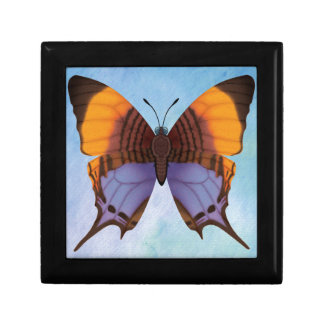 Pansy Daggerwing Butterfly Jewelry Boxes